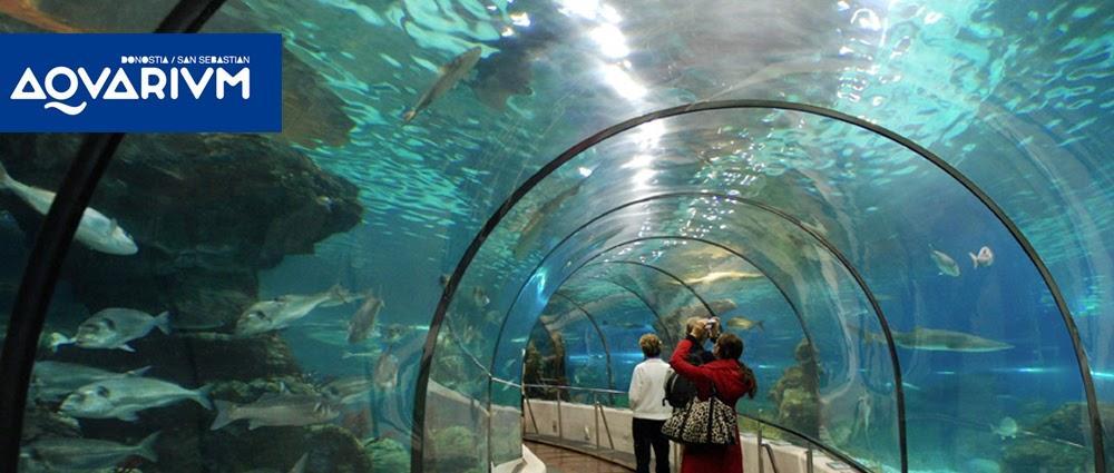http://ttipitxartela.info/wp-content/uploads/2017/01/aquarium.jpg